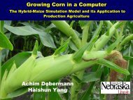 Irrigated corn, Lincoln 2003 - Hybrid Maize