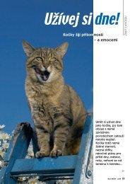 Kočky žijí přítomností a emocemi - Nakladatelství MINERVA CZ