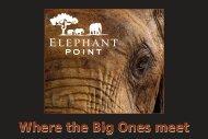 Where the Big Ones meet - Easyinfo