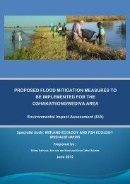 Wetland & Fish Ecology - Enviro Dynamics Namibia