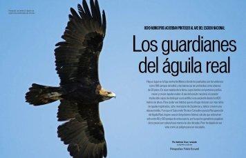 Descargar .pdf - águila real méxico
