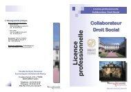 Licence professionnelle - Social-law.net