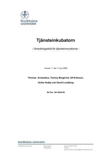 Tjänsteinkubatorn - Strategic Management Institute