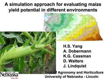 A simulation approach for evaluating maize yield ... - Hybrid Maize