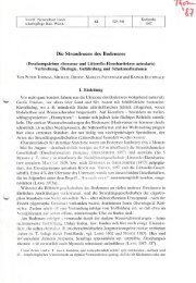 Thomas, P., Dienst, M., Peintinger, M. & Buchwald