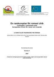 En ramkursplan för romani chib - Tema Modersmål