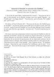 Tetsé Souvenir d'Amalek et souvenir du Chabbat - Hassidout