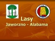 Lasy Jaworzno-Alabama