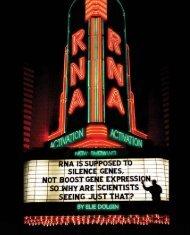 Now showing: RNA activation - Elie Dolgin