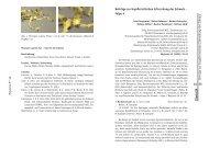 Floristik - Arbeitsgruppe Bodenseeufer (AGBU)