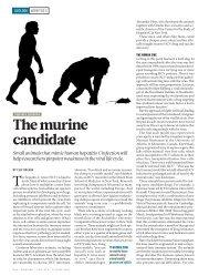 The murine candidate - Elie Dolgin