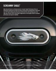 SCREAMIN' EAGLE® - Amazon S3