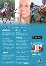 001831 ARAG/BRIT - Horse key fact:001831 ARAG/BRIT - SEIB