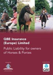 001130 QBE Public Liability 09:001130 QBE Public Liability - SEIB