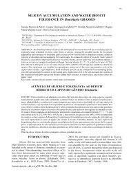 SILICON ACCUMULATION AND WATER DEFICIT ... - SciELO