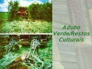 Adubação Verde - Adubos e Adubações