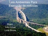 Leis Ambientais para Excecução de Rodovías - Rodovias Verdes