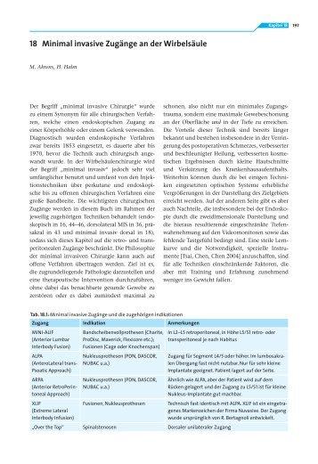 18 Minimal invasive Zugänge an der Wirbelsäule