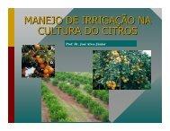 MANEJO DE IRRIGAÇÃO NA CULTURA DO CITROS - UFG