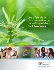SAIC-full-report-2015-fr