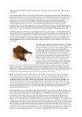 Mein Weg zu und mit Ronja von Iris -  Parelli Instruktoren - Seite 2