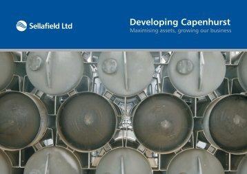 Download PDF - Sellafield Ltd