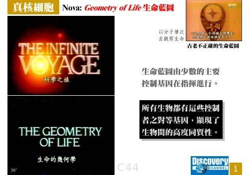 C44 Geometry of Life.pdf