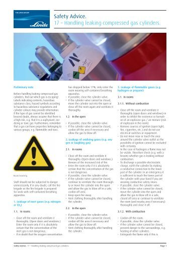 safe handling gas essay