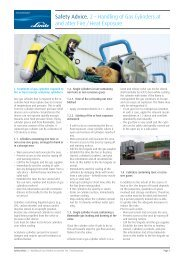 Safety Advice. 2 – Handling of Gas Cylinders at and after Fire / Heat ...