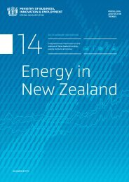 Energy-in-New-Zealand-2014-print