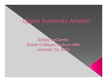upper extremity arteries