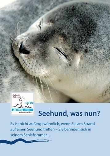 Seehund, was nun?