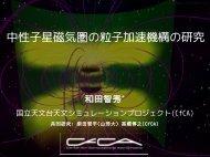 中性子星磁気圏の粒子加速機構の研究 - CfCA - 国立天文台