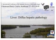 Diffus hepatic pathology - Berlin-Brandenburgische-Ultraschall ...