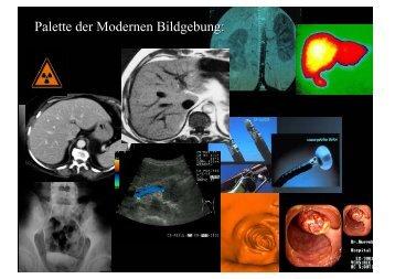 Palette der Modernen Bildgebung: - Berlin-Brandenburgische ...