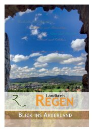 Landkreisbuch Regen: Blick ins Arberland