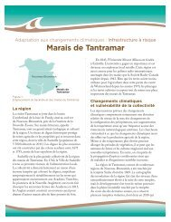 Marais de Tantramar - Atlantic Climate Adaptation Solutions