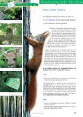Naturpark Holsteinische Schweiz e.v. - Seite 7