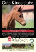 Pferdezuchtverband Baden-Württemberg - Fohlenschaukatalog Kleinpferde/Kaltblut I - Seite 2