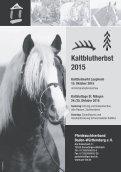 Pferdezuchtverband Baden-Württemberg - Fohlenschaukatalog Kleinpferde/Kaltblut I - Seite 4