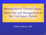 Introduction to Thermal Injury: Burn Care and Management of the ...