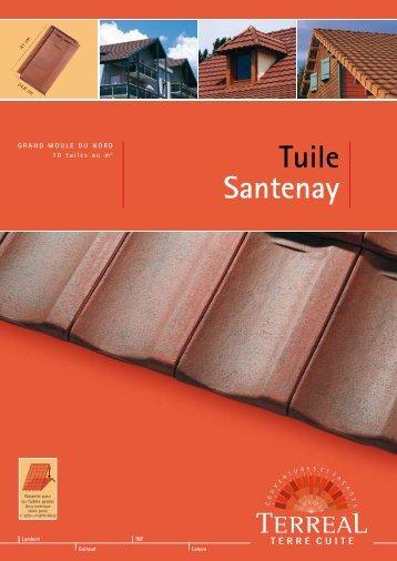 Tuile Santenay - Terreal
