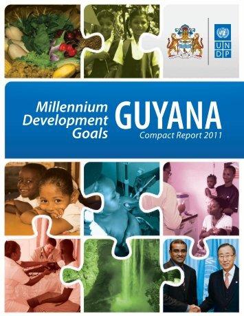 Millennium Development Goals Compact Report 2011