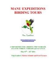 Atlantic Forest, Cerrado and Savannas - May - Birding Peru