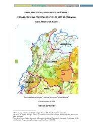 Nota Tecnica Amazonia Colombiana - RAISG