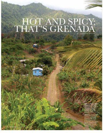 DreamScapes Hot & Spicy Grenada - Josephine Matyas | Writer ...
