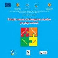 Solutii comune în integrarea romilor pe piata muncii