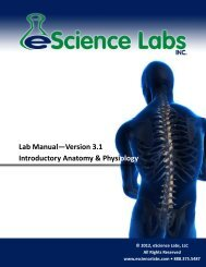 Lab 6: The Skeletal System - 21st Century Hands-On Science Kits