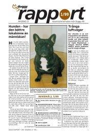 Epilepsi hos hund - Doggy Rapport