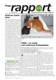 Doggy Rapport 2 - 2010